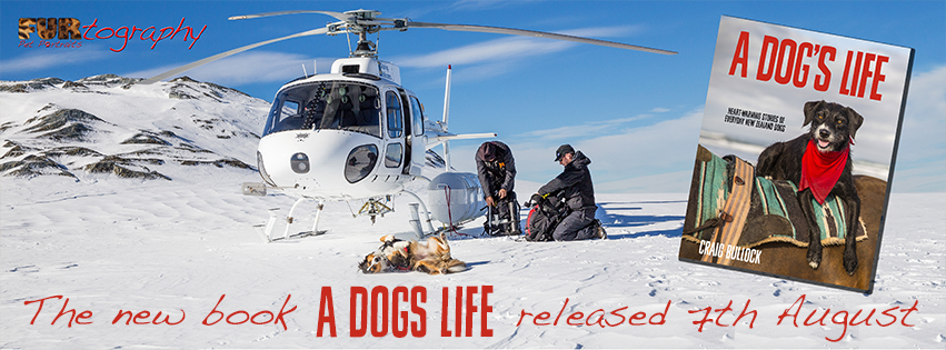 New Book Release – A Dog's Life