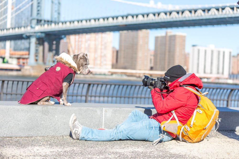 NYC Dogs - Behind the Scene2