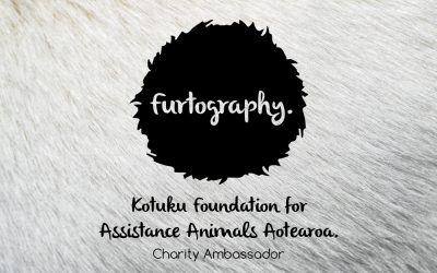 Ambassador for the Kotuku Foundation | New Zealand Dog Photographer