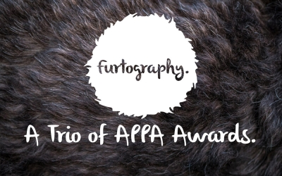 Another Trio of Awards | Australian Institute of Professional Photography